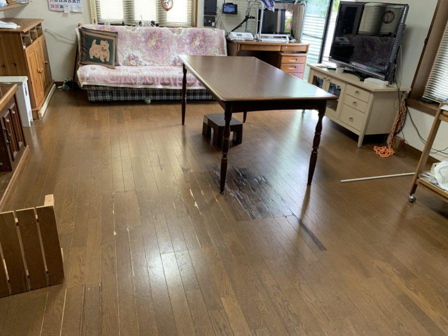 四日市市 S邸 ワンちゃんの爪と椅子のキャスターで傷んだ床のリフォーム!